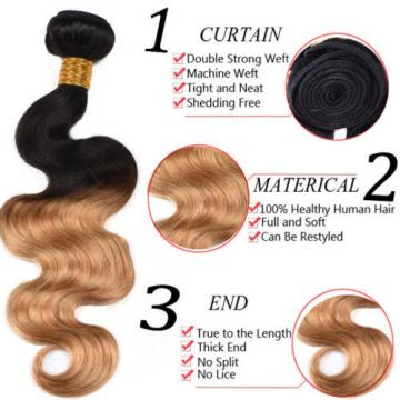 50g/bundle Peruvian Virgin Body Wave Ombre Human Hair Weave Weft 4bundles/lot