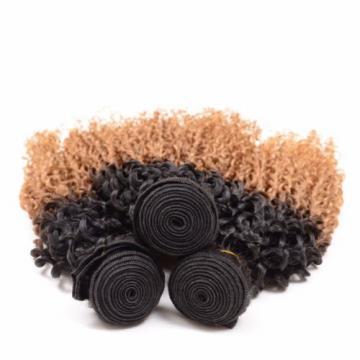 3Bundles/300g Peruvian Kinky Curl Virgin Hair Weft Ombre Color Human Hair Weaves