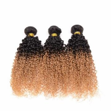 100g Ombré Color T1B/27 Virgin Peruvian Kinky Curkly Human Hair Weave 1pc 20inch