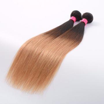 2Bundles/100g Peruvian Virgin Body Wave Ombre Human Hair Extensions Weave Weft