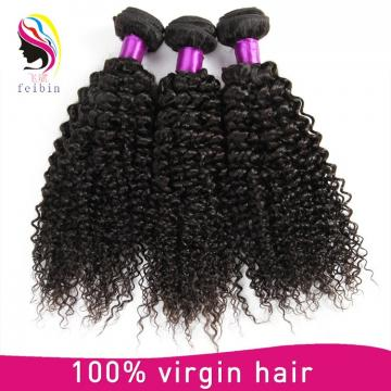 virgin malaysia kinky curly hair kinky curly no tangle no free human hair